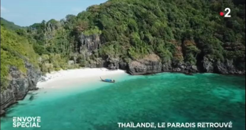 les tortues sont de retour sur les plages de Thaïlande