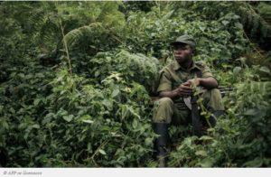 RDC Plus grande biodiversité d'Afrique