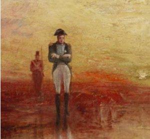 Napoléon Ombres et lumières d'un destin d'exception